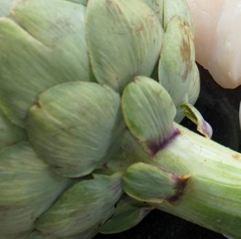 Love the Curmudgeonly Artichoke