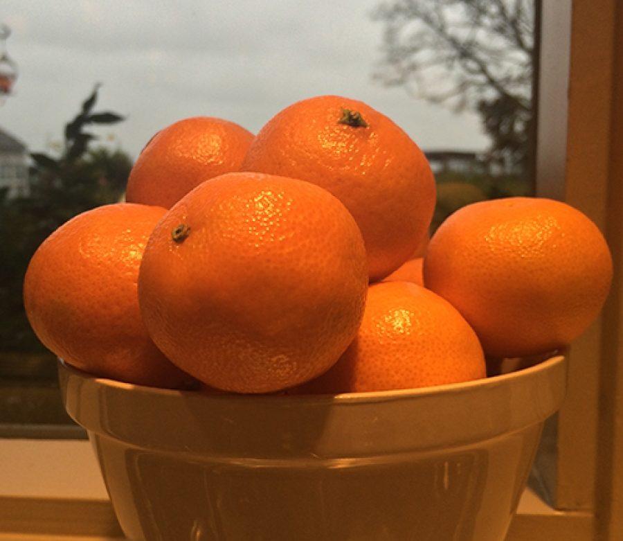 Orange You Glad It's January?