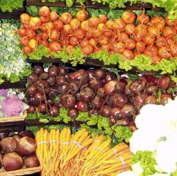 The Vegetable Underground