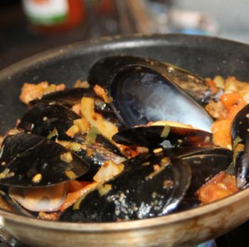 Mussel Muscles
