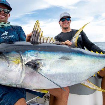 Traveling Tuna