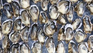 Be Shellfish, Eat Oysters